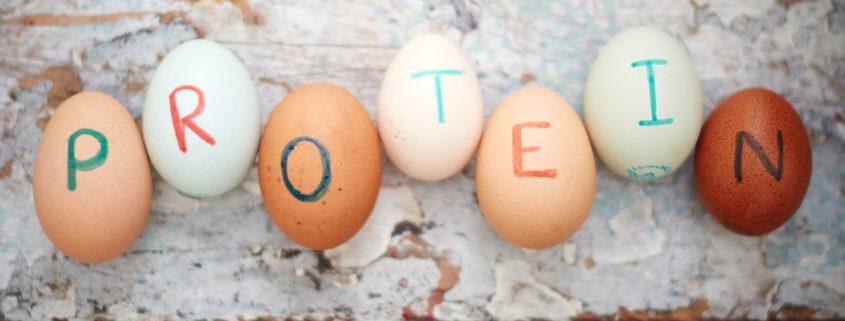 Jajca so eden izmed močnih virov beljakovin.